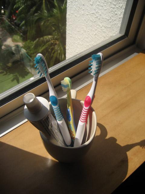 20100919-Toothbrush